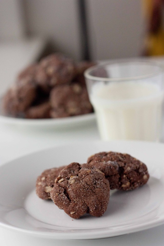 Double Chocolate Oatmeal Peanut Butter Cookies