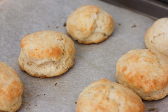 biscuits1