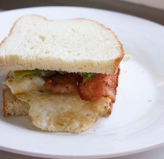 eggbaconavocadosandwich2