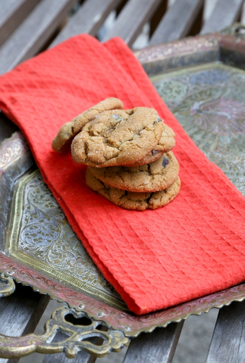 Molasses Cranberry Cookies2