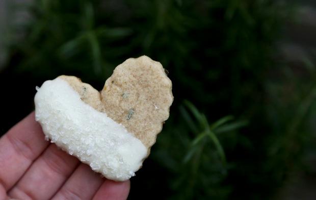 lemonrosemarycookies1