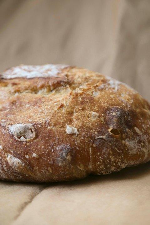 bread3 copy