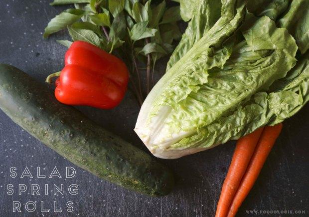 salad spring rolls1
