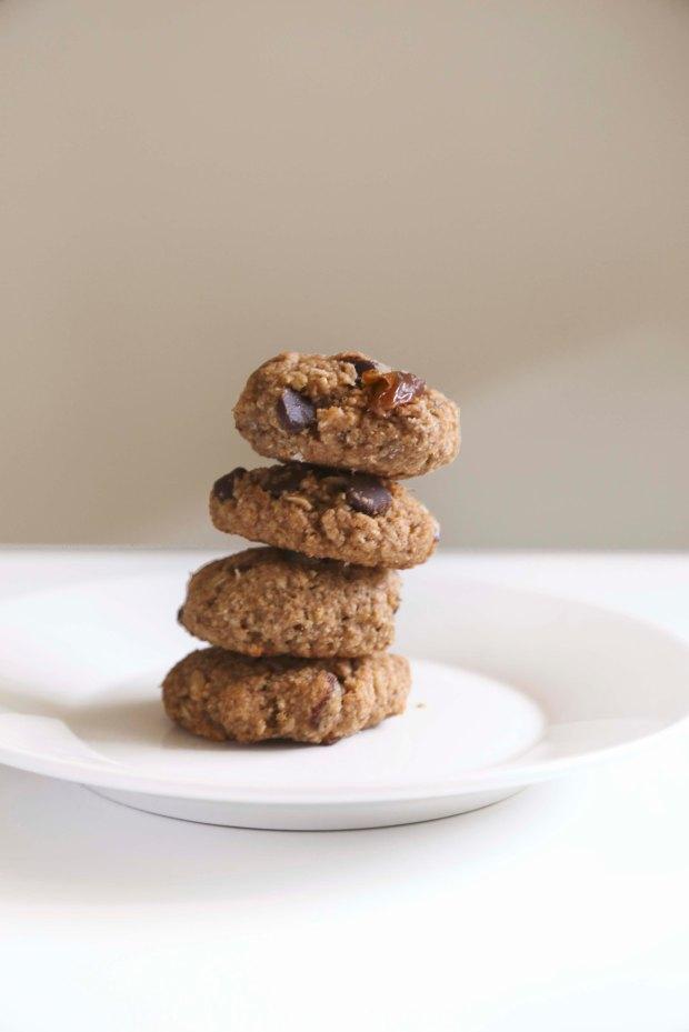 pboatmealcookies3